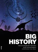 Boek cover Big history van Constance van Hall