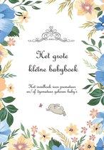 Het grote kleine babyboek - het invulboek voor prematuur en/of dysmatuur geboren baby's