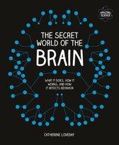 Omslag The Secret World of the Brain
