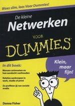De kleine Netwerken voor Dummi