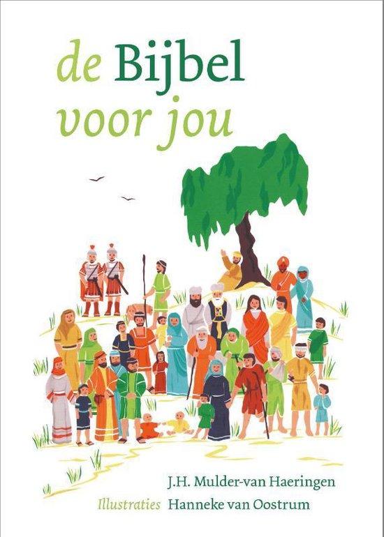 De Bijbel Voor Jou - J.H. Mulder-Van Haeringen