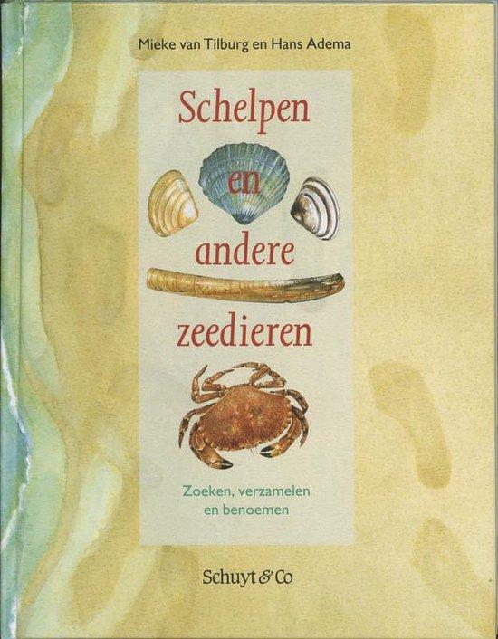 Schelpen en andere zeedieren - Mieke van Tilburg pdf epub