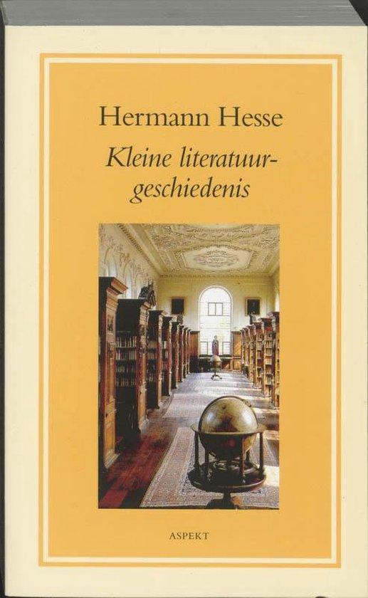 Kleine literatuurgeschiedenis - Hermann Hesse |