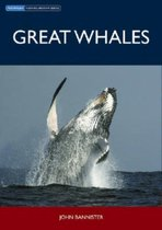Great Whales