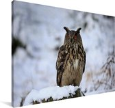Een oehoe in de sneeuw tijdens de winter Canvas 120x80 cm - Foto print op Canvas schilderij (Wanddecoratie woonkamer / slaapkamer)