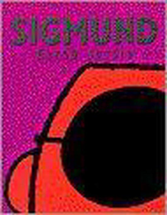 Derde sessie Sigmund - Peter de Wit |