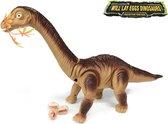 Dinosaurus speelgoed - Diplodocus - Dino geluiden - legt eieren - 51CM (inclusief batterijen)
