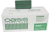 OASIS Floral Foam Steekschuim | Economy | 20x | 20x10x8cm