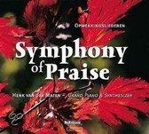 Henk Van Der Maten - Symphony Of Praise