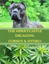 The Merrycastle Decagon
