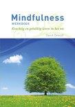 Mindfulness Werkboek - David Dewulf