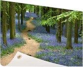 Bospaadje met blauwe bloemen Tuinposter 200x100 cm - Tuindoek / Buitencanvas / Schilderijen voor buiten (tuin decoratie) XXL / Groot formaat!