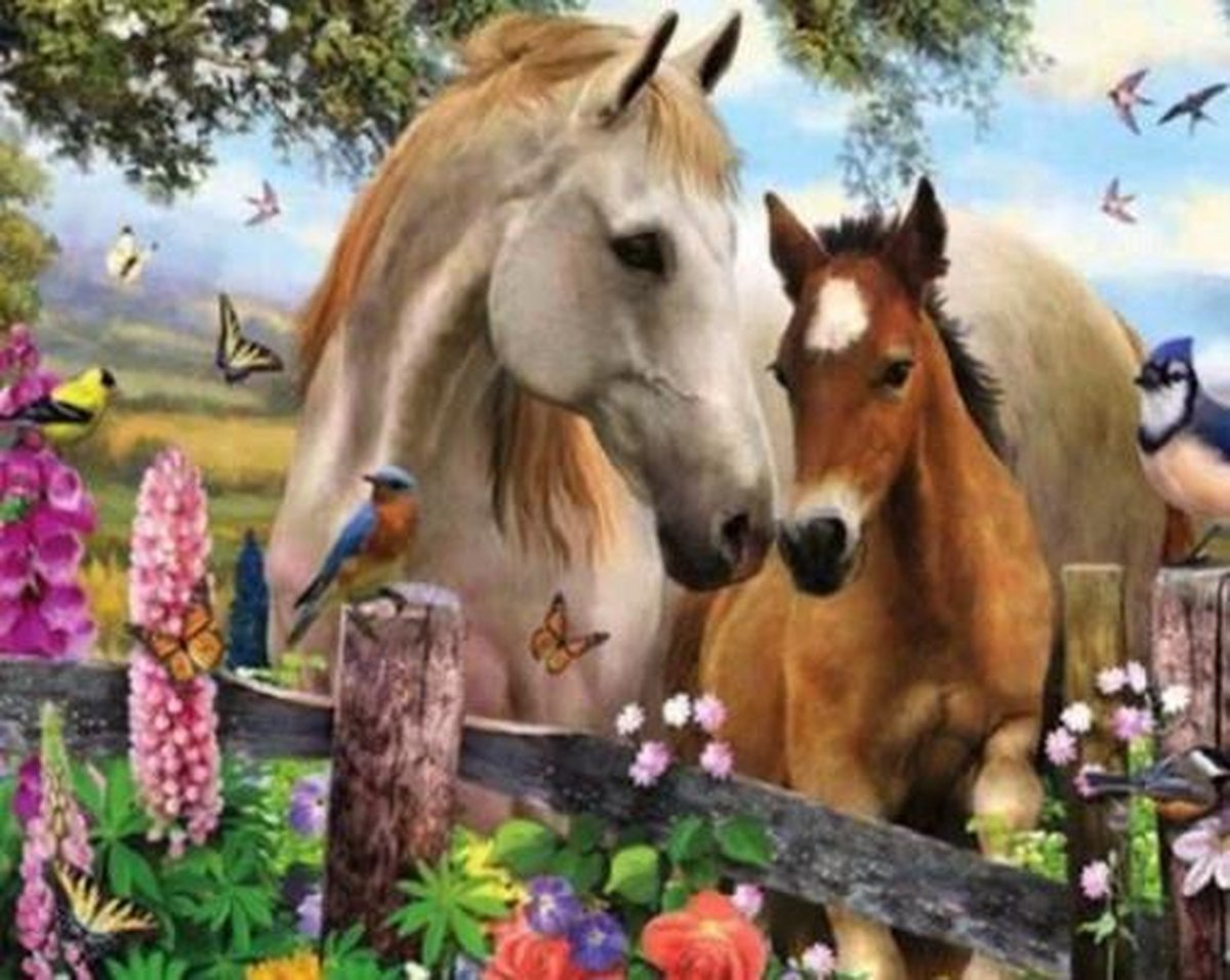 Diamond Painting Pakket Prachtige Paarden - FULL - Volledig - Diamond Paintings - 30x25 cm - SEOS Shop ®