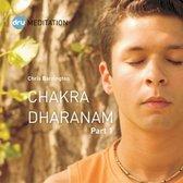 Dru Yoga - Chakra Dharanam (part 1) - Meditation through the chakras