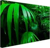 Palmbladeren in de jungle Canvas 30x20 cm - klein - Foto print op Canvas schilderij (Wanddecoratie woonkamer / slaapkamer)