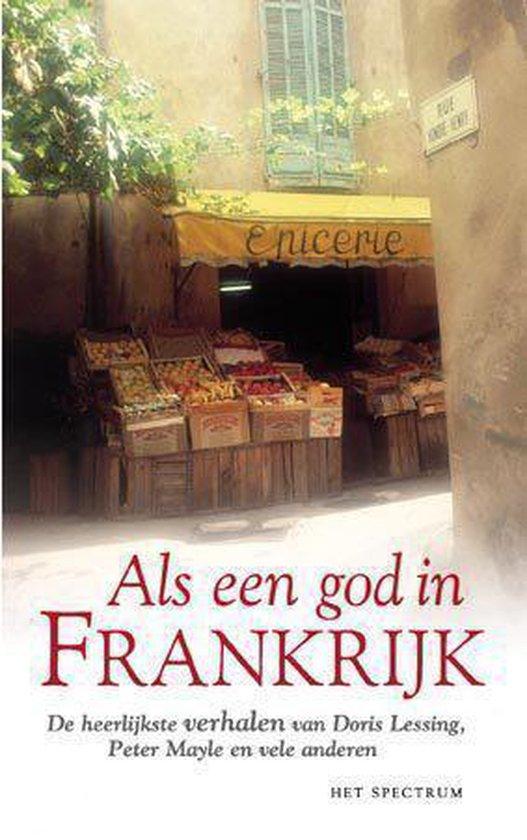 ALS EEN GOD IN FRANKRIJK - Schneider pdf epub