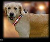 Flamingo Veiligheidshalsband hond LED - Zwart - 15mm x 30/45cm