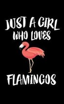 Just A Girl Who Loves Flamingos