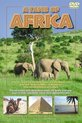 A Taste Of Africa-Dvd