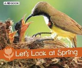 Let's Look at Spring
