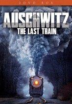 Special Interest - Auschwitz, Last Train