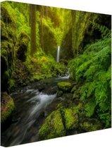 Prachtig plaatje jungle Canvas 30x20 cm - klein - Foto print op Canvas schilderij (Wanddecoratie woonkamer / slaapkamer)