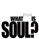 Boek cover What Is Soul? van David Bloom