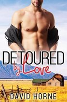Detoured by Love
