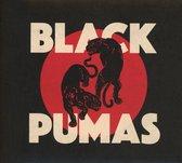 Afbeelding van Black Pumas