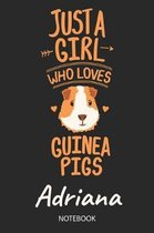 Just A Girl Who Loves Guinea Pigs - Adriana - Notebook