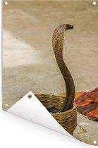 Indische cobra slang in een mand Tuinposter 80x120 cm - Tuindoek / Buitencanvas / Schilderijen voor buiten (tuin decoratie)