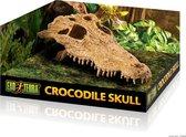 Exo Terra Crocodile Skull - Terrarium Schuiplaats - 22 x 12 x 7 cm