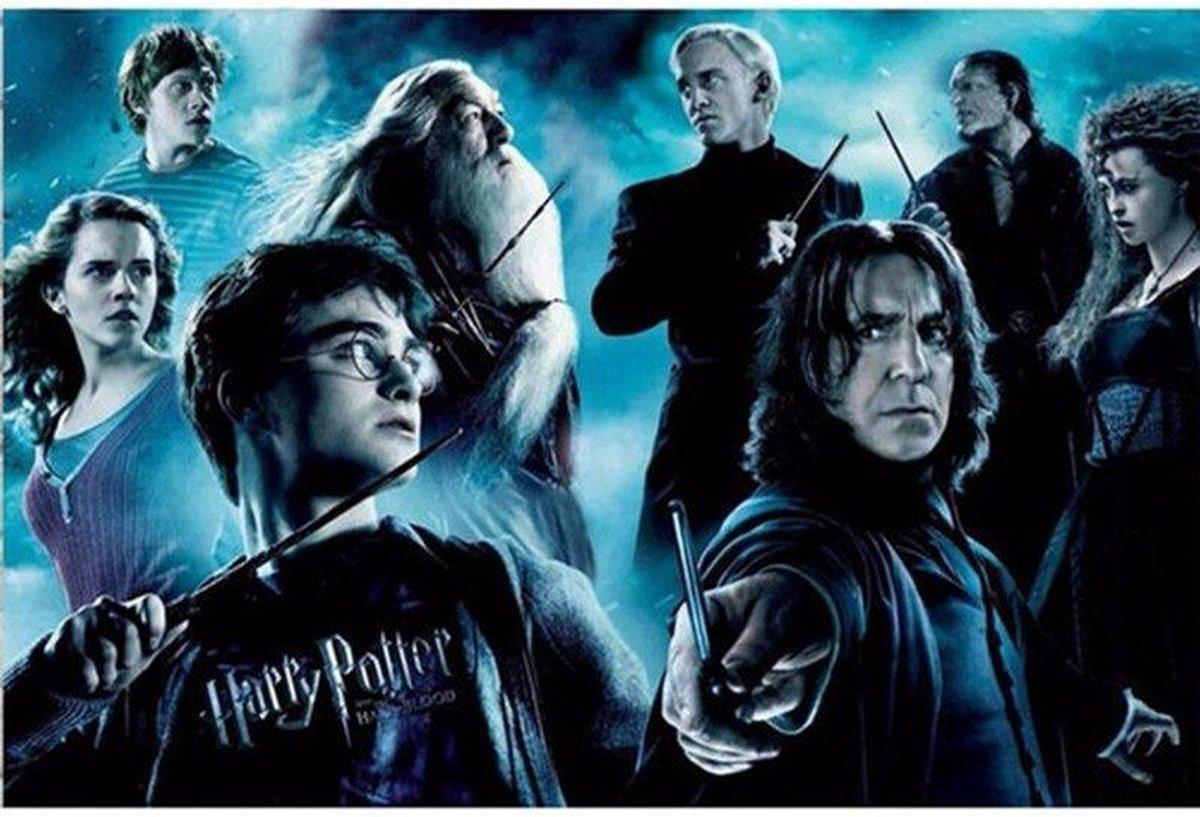 Premium Paintings - Harry Potter - Diamond Painting Volwassenen - Pakket Volledig / Pakket Full - 30x40 - Moederdag cadeautje