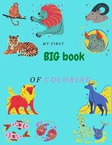 My first big book of coloring: coloring book for kids 3-5 .8.5*11 in
