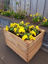 Bloembak | origineel fruitkist | Plantenbak 60 liter | 50x40x30 cm | doe-het-zelf | Planten | Voorjaarsbak | plantjes-kist | moestuin-krat