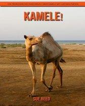 Kamele! Ein pädagogisches Kinderbuch über Kamele mit lustigen Fakten