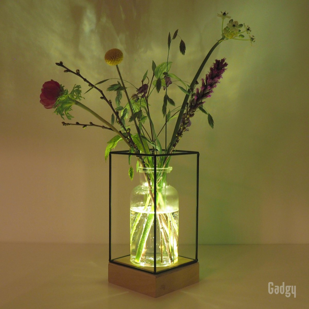 Gadgy Vaaslamp - Vaas met LED verlichting   Houten basis met 5 LED lampjes, glazen vaas en zwart met