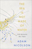 The Sea is Not Made of Water: Life Between the Tides