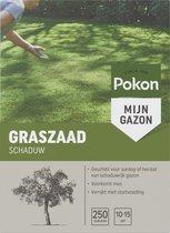 Pokon Graszaad Schaduw - Voor aanleg & herstel van gazon in de schaduw - 250gr (voor 10-15m²)
