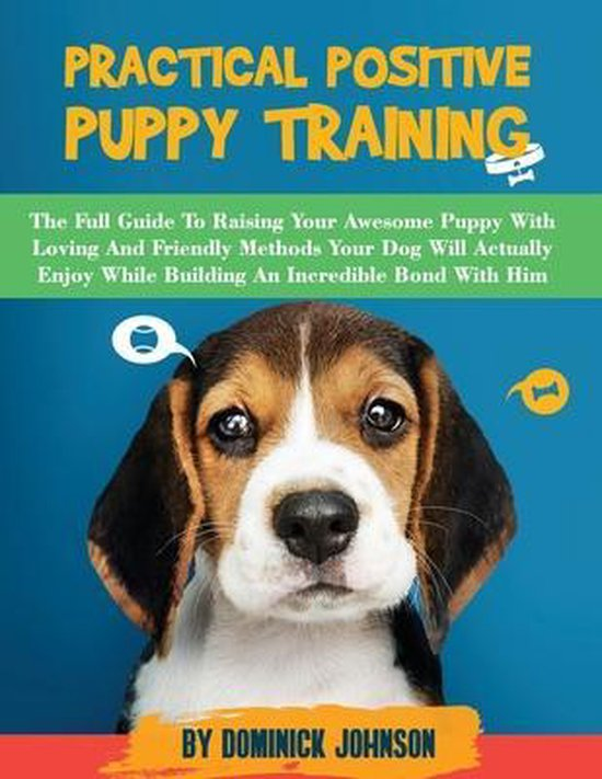 Practical Positive Puppy Training