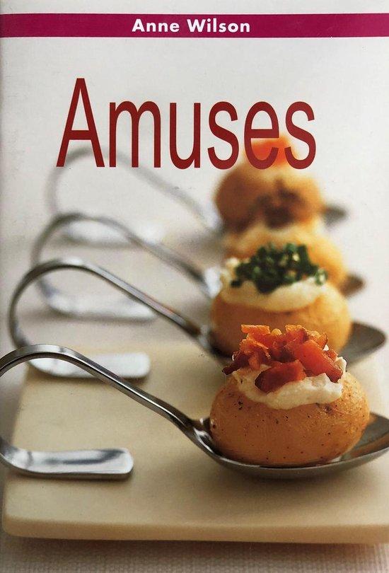 Minikookboekje - Amuses - Anne Wilson |