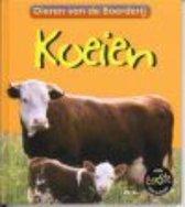 Dieren van de boerderij  -   Koeien