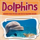 Dolphins: Discover These Pictures And Facts Of Dolphins For Kids