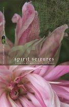 Omslag Spirit Seizures