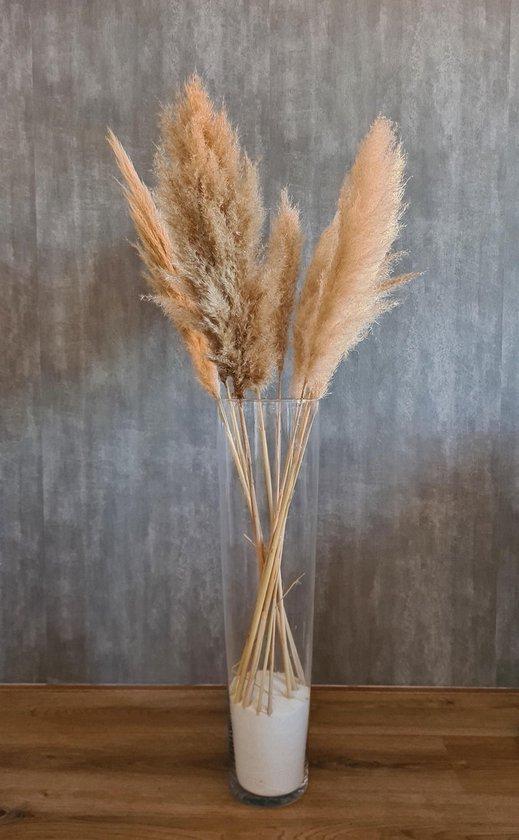 Pampas gras   pampas pluimen   3 stuks l 90 - 110 cm
