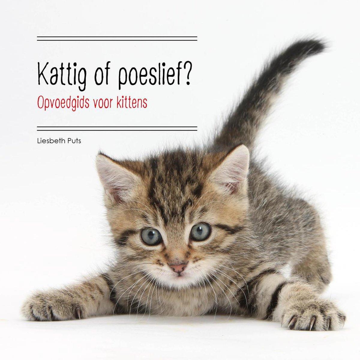Kattig Of Poeslief? Opvoedgids Voor Kittens 2E Ed.