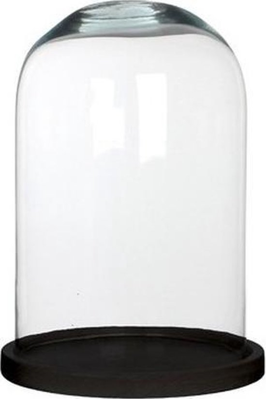 Glazen decoratie stolp Hella op zwarte houten plateau 21 x 30 cm - Home Deco stolpen - Woonaccessoires