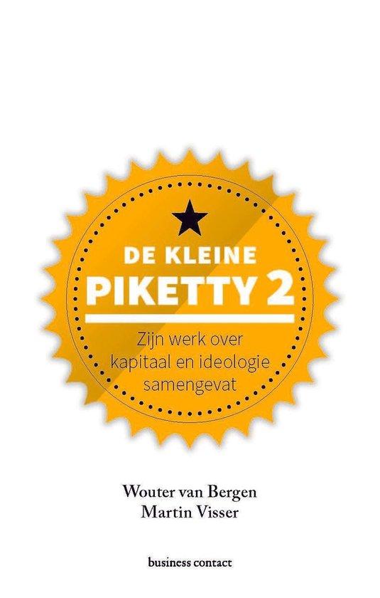 De kleine Piketty 2 - Wouter van Bergen |