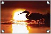 Tuinposter –Reiger met Zonsondergang– 90x60 Foto op Tuinposter (wanddecoratie voor buiten en binnen)