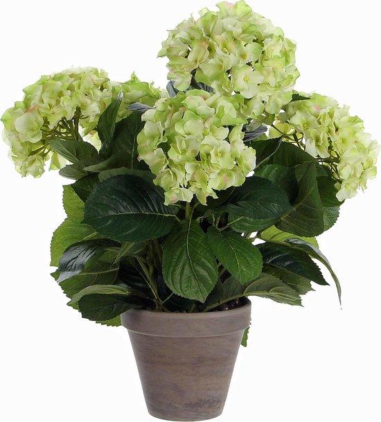 Mica Decorations hortensia creme in pot stan grijs d13,5 maat in cm: 45 x 45 - CREME